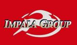 Impala Plant & Civil