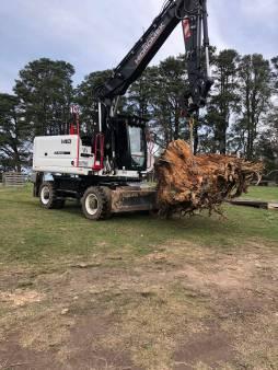Wheeled Excavator -  Tilt Hitch /  Log Grab / 14 Ton /  Road Registered   / No Damage to Asphalt / Digs as well conventional excavator
